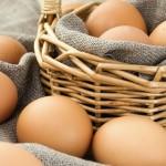 Organic egg scorecard