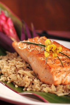 organic-salmon-240x361