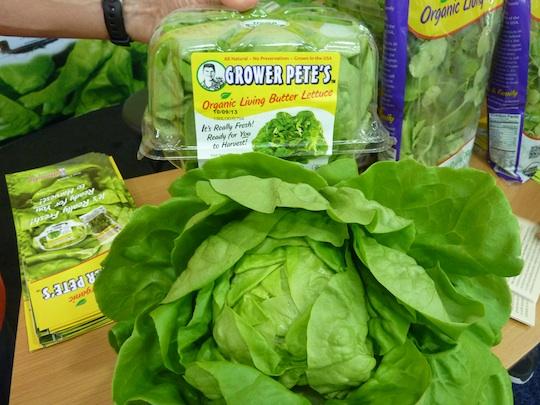 grower-petes-organic-butter-lettuce