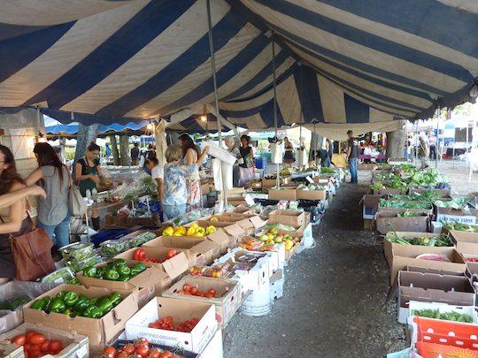 glaser-organic-farms-miami-inside-shot