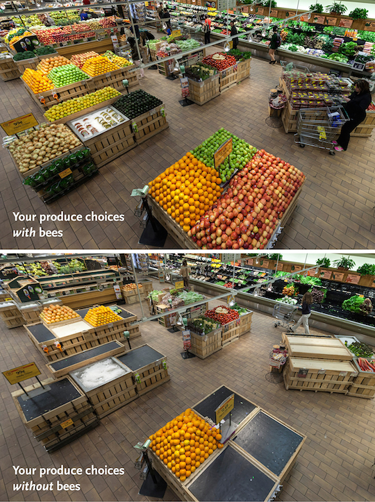 whole-foods-bees