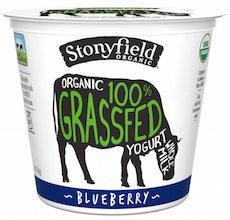 stonyfield-organic-grassfed-yogurt-6oz-blueberry-front