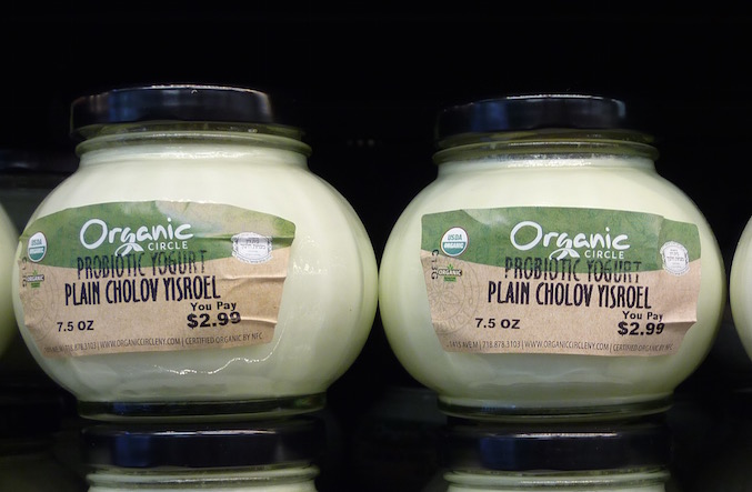 organic-circle-brooklyn-probiotic-yogurt